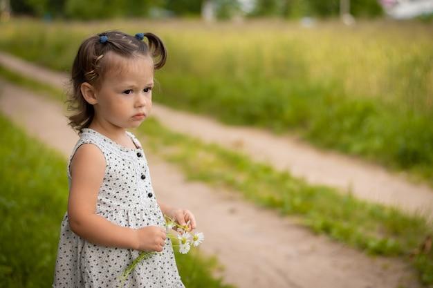가벼운 드레스를 입은 귀여운 소녀 1-3은 여름에 데이지 꽃다발이 있는 풀밭 배경에 있는 들판의 길에 서 있습니다.