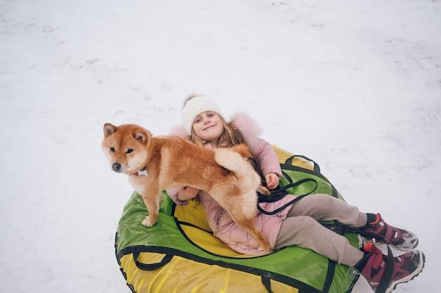 Маленькая милая девочка в розовой теплой верхней одежде веселится с красной собакой шиба-ину катается на надувной снежной трубе