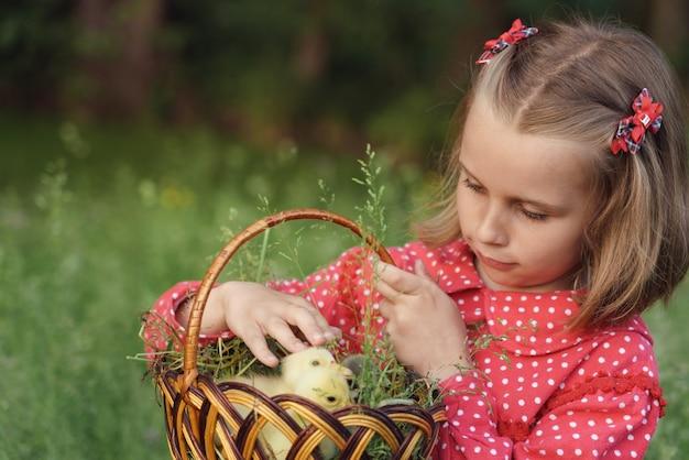 屋外の中に赤ちゃんアヒルとバスケットを運ぶ赤いドレスの小さなかわいい女の子