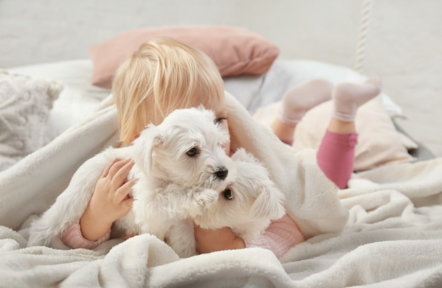 Little cute girl with puppies at home