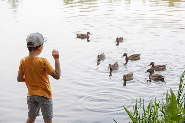 小さなかわいい幼児の男の子が公園でアヒルに餌をやる。子どもたちと自然とのコミュニケーション。湖の池の川のそばで田舎で休んでください。ファームはオフラインです。単純な喜び。子供時代