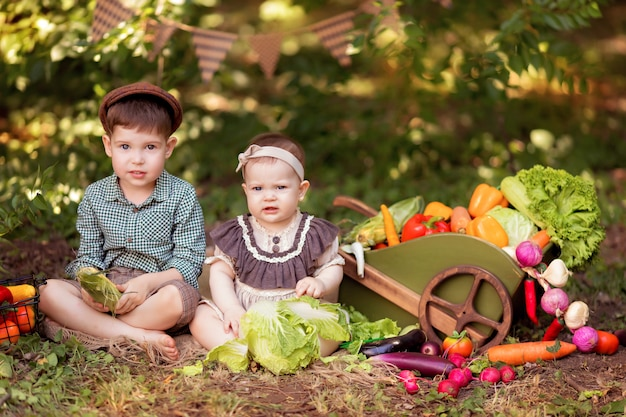 Little gardener boy and girl collects a crop of vegetables on nature. delivery of products