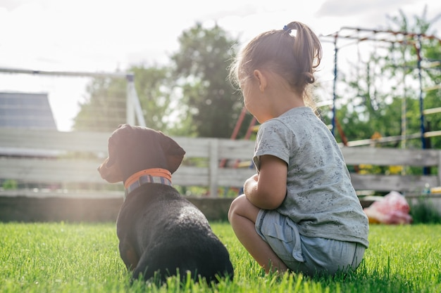 Little girl 3-4 sit back and look forward with black-brown dachshund dog in collar, on green grass