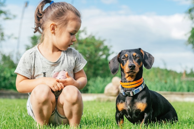 Little girl 3-4 sit and look at black-brown dachshund dog in collar, on green grass