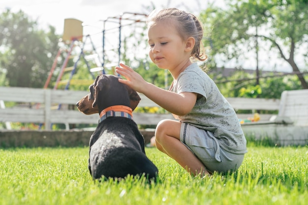 Little girl 3-4 sit and pet black-brown dachshund dog in collar, on green grass
