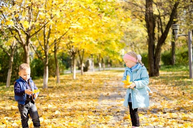 변화하는 계절을 즐기는 타락한 노란 잎을 가지고 노는 가을 공원에서 어린 소녀와 소년