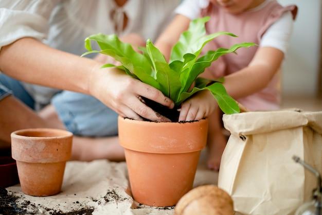 家で小さな女の子とお母さんの鉢植え植物