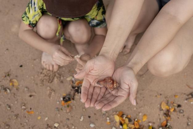 貝殻を集める少女と母親