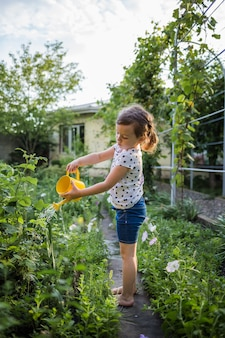 Little girl assistant watering vegetables in the garden