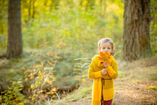 Маленькая девочка осенью держит листья.