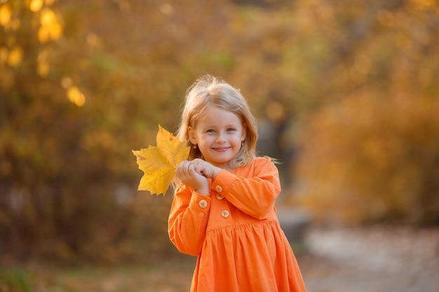 Little girl in autumn in the park holds a bouquet of autumn leaves