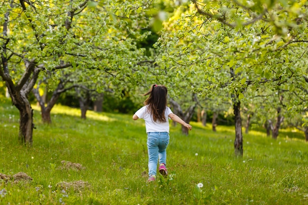 Little girl blows off fluff from a bouquet of dandelions, standing in the middle of an apple orchard