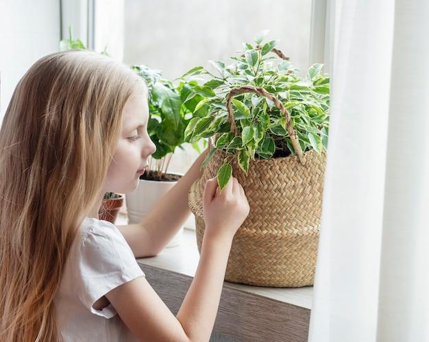 家で観葉植物の世話をする少女