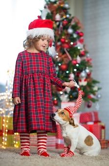 Маленькая девочка празднует рождество с собакой джек рассел терьер в полосатых носках дома под елкой