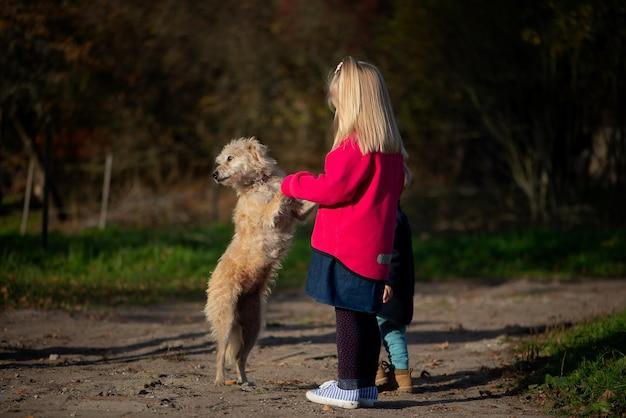 Маленькая девочка ребенок ребенок и собака, играя на открытом воздухе