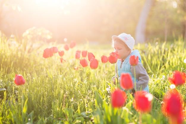 Маленькая девочка нюхает цветок в поле с зеленой травой и цветущими тюльпанами на закате