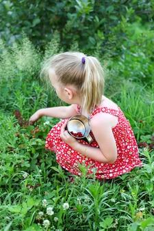 小さな女の子がベリーを集める