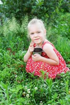 小さな女の子がイチゴを集める