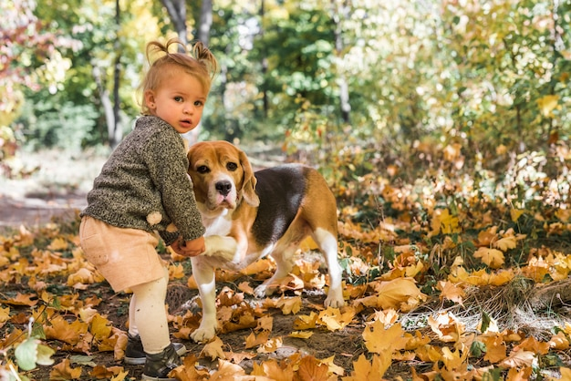 Little girl doing handshake with beagle dog in forest