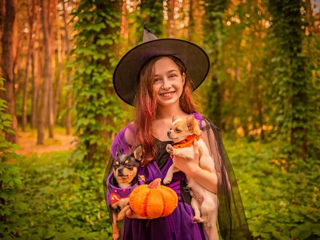 Маленькая девочка, одетая как ведьма в лесу с двумя собаками. девушка и чихуахуа. хэллоуин.