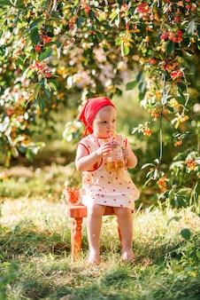 어린 소녀는 체리 밭 배경에서 나무 의자에 앉아 주스를 마신다