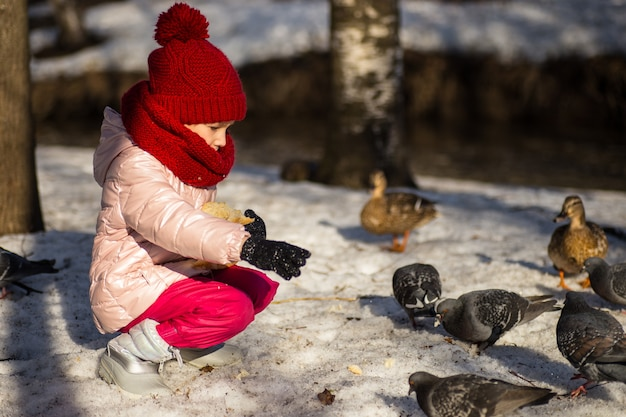 Маленькая девочка кормит уток зимой
