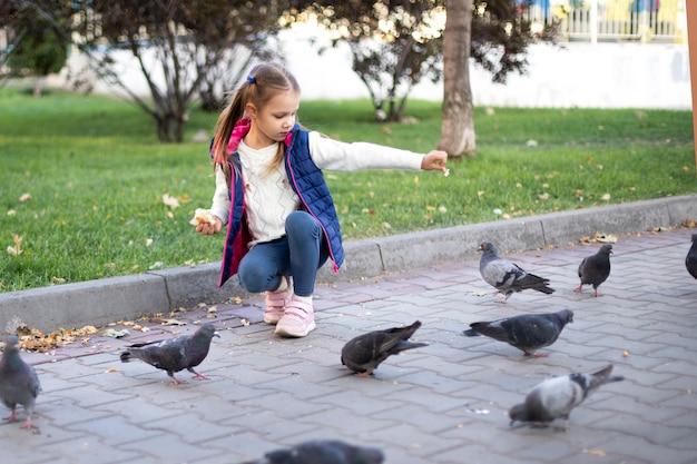 小さな女の子が鳥に餌をやる
