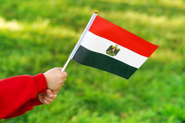 Little girl hands hold egypt flag