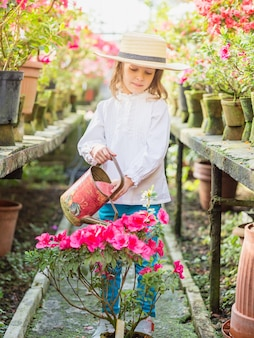 Little girl helps watering plants and gardening in greenhouse.