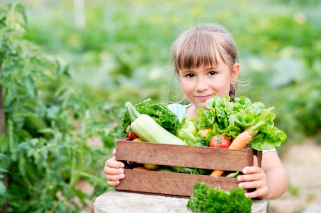 Маленькая девочка держит корзину, полную органических овощей и корней урожая на органической био-ферме. осенний урожай овощей.