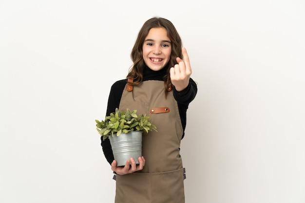 오는 제스처를 하 고 흰색 배경에 고립 된 식물을 들고 어린 소녀