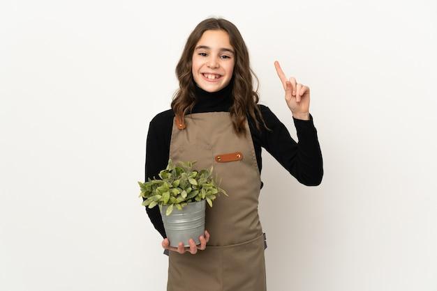 좋은 아이디어를 가리키는 흰색 배경에 고립 된 식물을 들고 어린 소녀