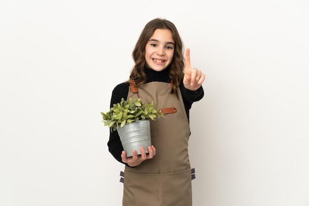 보여주는 손가락을 들고 흰색 배경에 고립 된 식물을 들고 어린 소녀