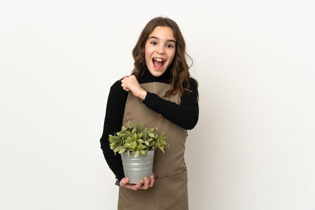 Маленькая девочка держит растение, изолированное на белой стене, празднует победу