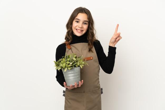 흰 벽에 고립 된 식물을 들고 어린 소녀가 최고의 기호에 손가락을 들고