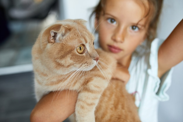 Little girl holding cat in her arms at home indoor, child playing with domestic animals pet