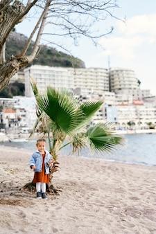 드레스에 어린 소녀와 그녀의 팔에 장난감이있는 데님 재킷은 손바닥의 배경에 서