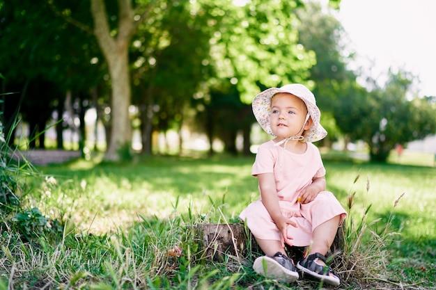 Маленькая девочка в платье и панаме сидит на пне на зеленой лужайке