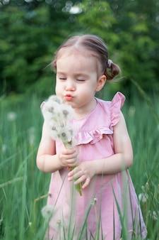 ピンクのドレスを着た少女がルピナスの花のフィールドでタンポポを吹く