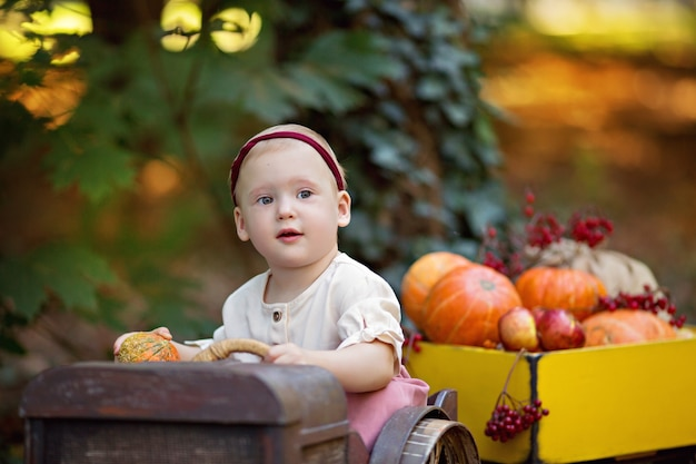 Маленькая девочка в тракторе с тыквами