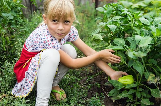 ピーマンとベッドの横にある庭の小さな女の子