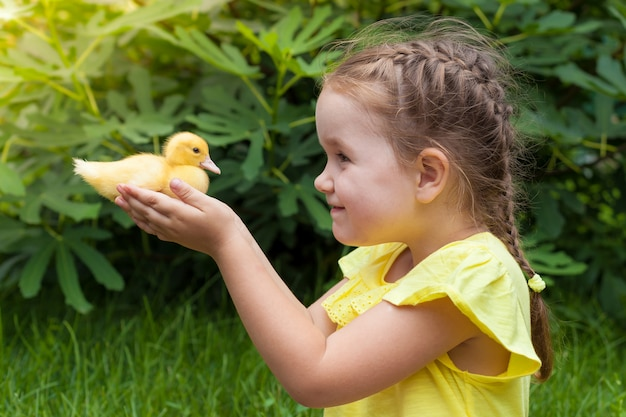 A little girl is holding a duckling in her hands. nature.