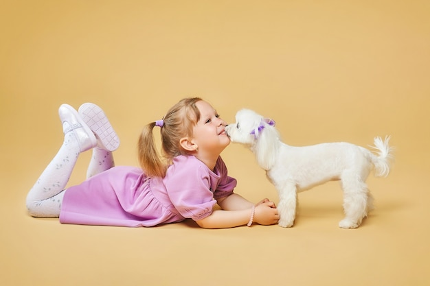 Little girl is lying on the floor with a maltese lap dog in front of her who licks her lips  photo shoot in the studio on a yellow background
