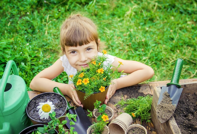 A little girl is planting flowers. the young gardener. selective focus.