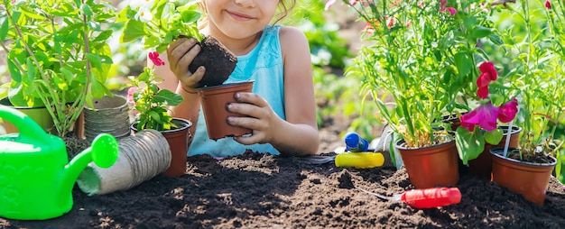A little girl is planting flowers.