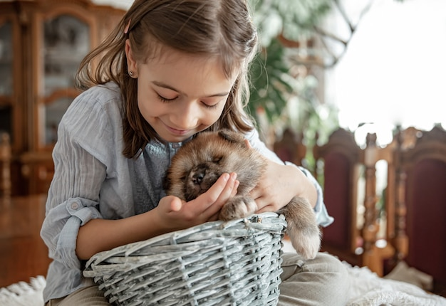 A little girl is playing with her little and fluffy puppy