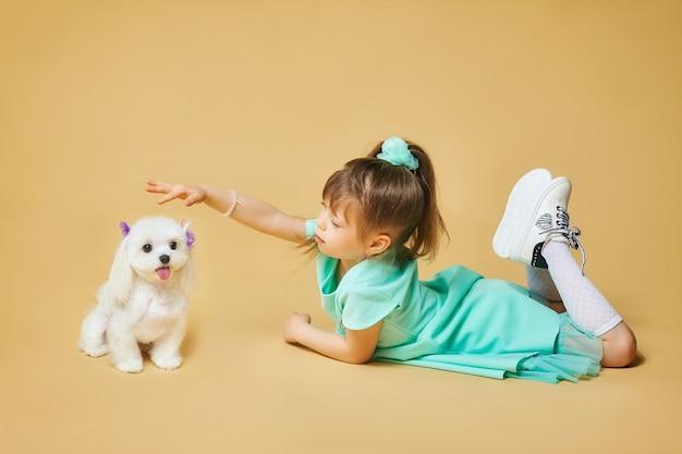 어린 소녀는 몰타 무릎 개와 함께 바닥에 누워 있습니다. 노란색 배경에 스튜디오에서 사진 촬영.