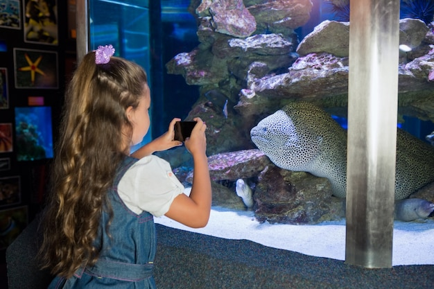 Little girl looking at fish tank