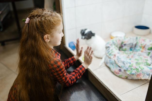 犬小屋、ペット ショップで子犬を見ている少女。ペットショップで子供を買う道具、家畜のアクセサリー