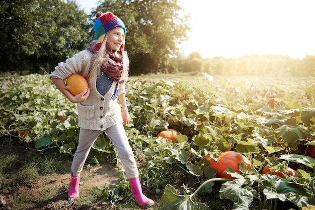 Bambina che cerca la zucca nel campo